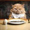 Hukum makan karena lapar adalah mandub atau dianjurkan.