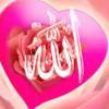 BAHWA TUHAN ADALAH KHAZANAH YANG TERPENDAM