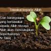 PENJELASAN TENTANG TAWAKAL, TAFWIDL DAN TASLIM
