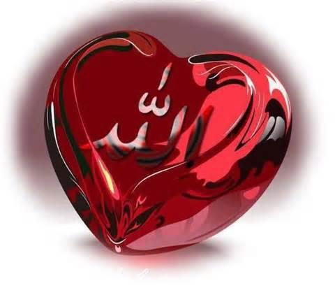 LOVE-ALLOH1.jpg